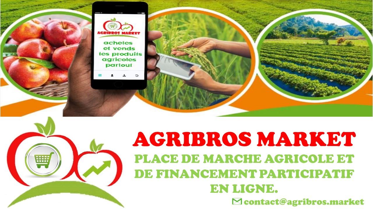 Quels sont les défis rencontrés par les entrepreneurs e-agricoles lors de la mise en place des solutions et services numériques pour l'agriculture ?